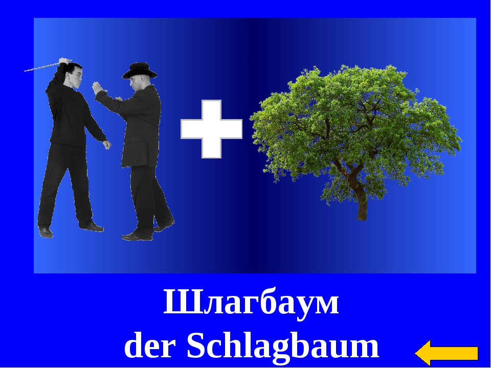Шлагбаум der Schlagbaum