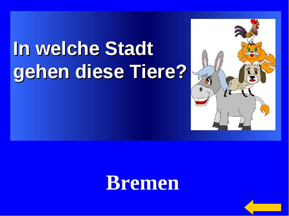 In welche Stadt gehen diese Tiere? Bremen