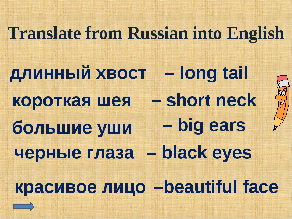 Translate from Russian into English длинный хвост – long tail короткая шея –...