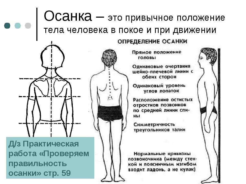 Осанка – это привычное положение тела человека в покое и при движении Д/з Пра...