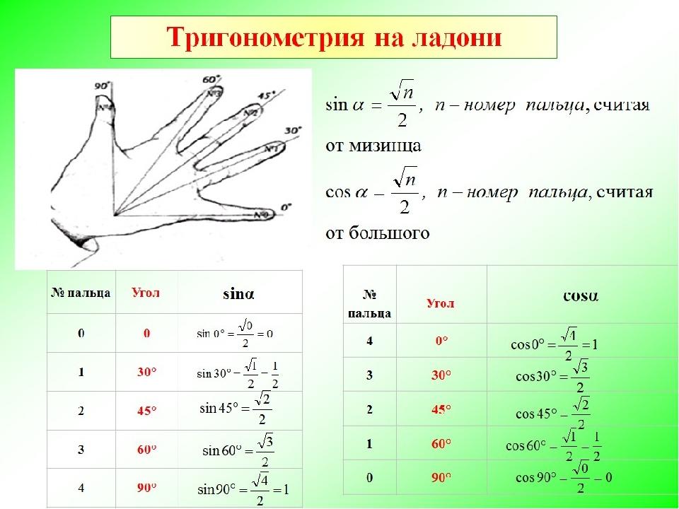 Человечки Синусы Косинусы Шпаргалки