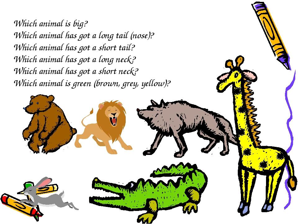Смешное животное рисунок с описанием на английском языке 3 класс, открыток