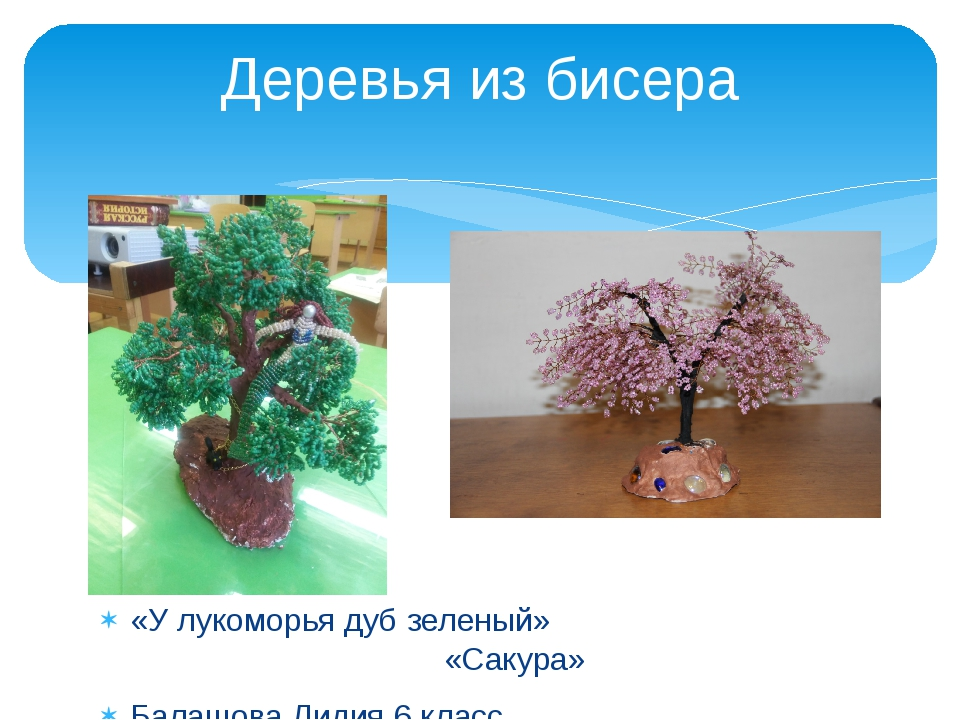 «У лукоморья дуб зеленый» «Сакура» Балашова Лидия 6 класс. Каракчиева Анжела...