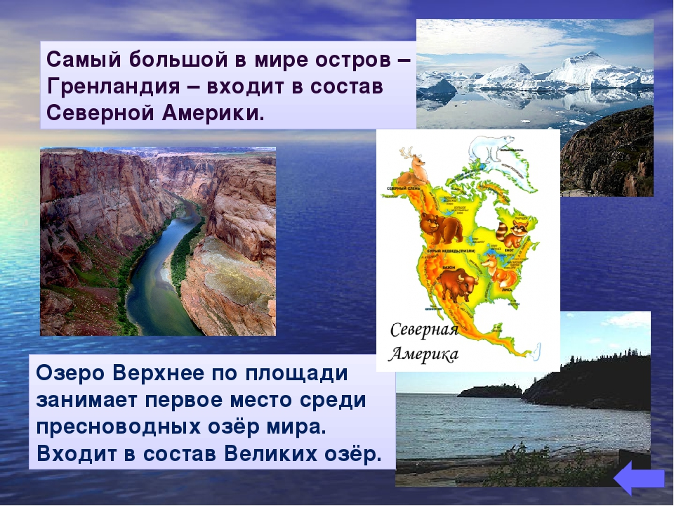Самый большой в мире остров – Гренландия – входит в состав Северной Америки....