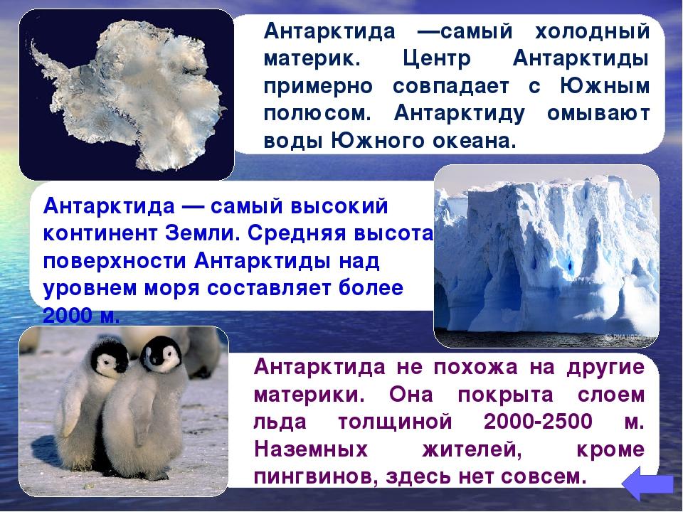 Антарктида не похожа на другие материки. Она покрыта слоем льда толщиной 2000...