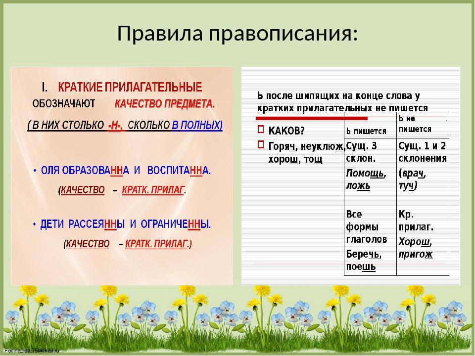 Правила правописания: FokinaLida.75@mail.ru