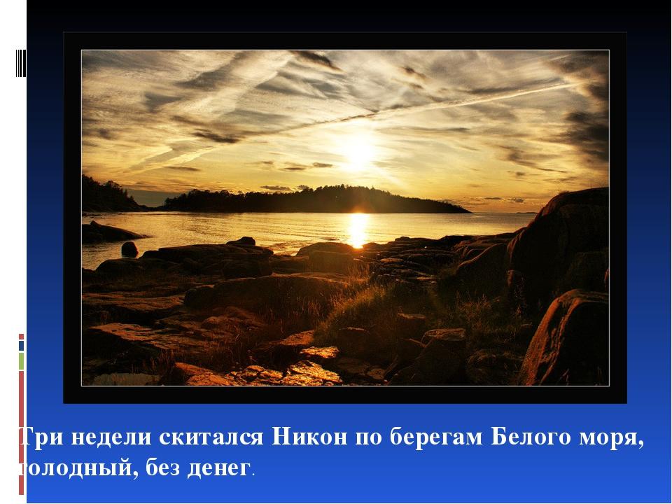 Три недели скитался Никон по берегам Белого моря, голодный, без денег.