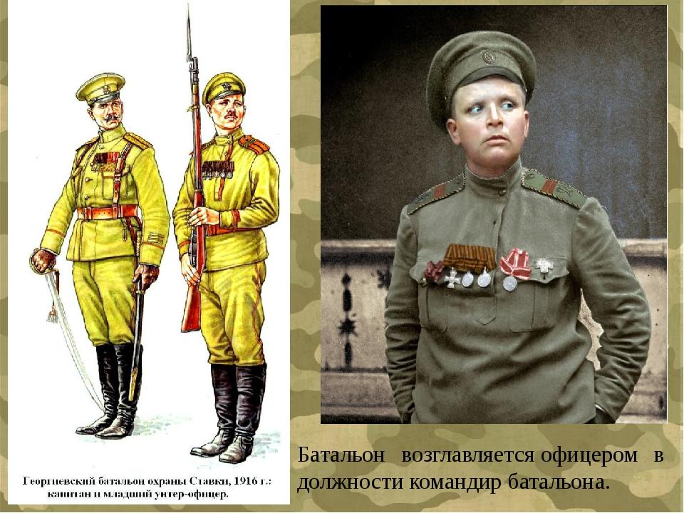 Батальон возглавляетсяофицером в должностикомандир батальона.