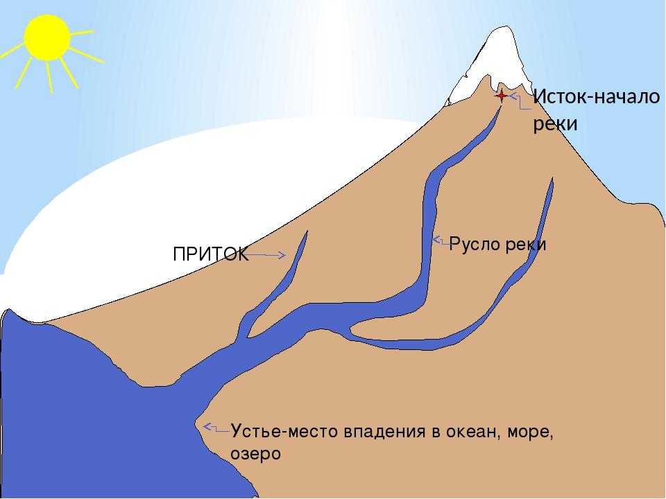Исток-начало реки Устье-место впадения в океан, море, озеро Русло реки ПРИТОК