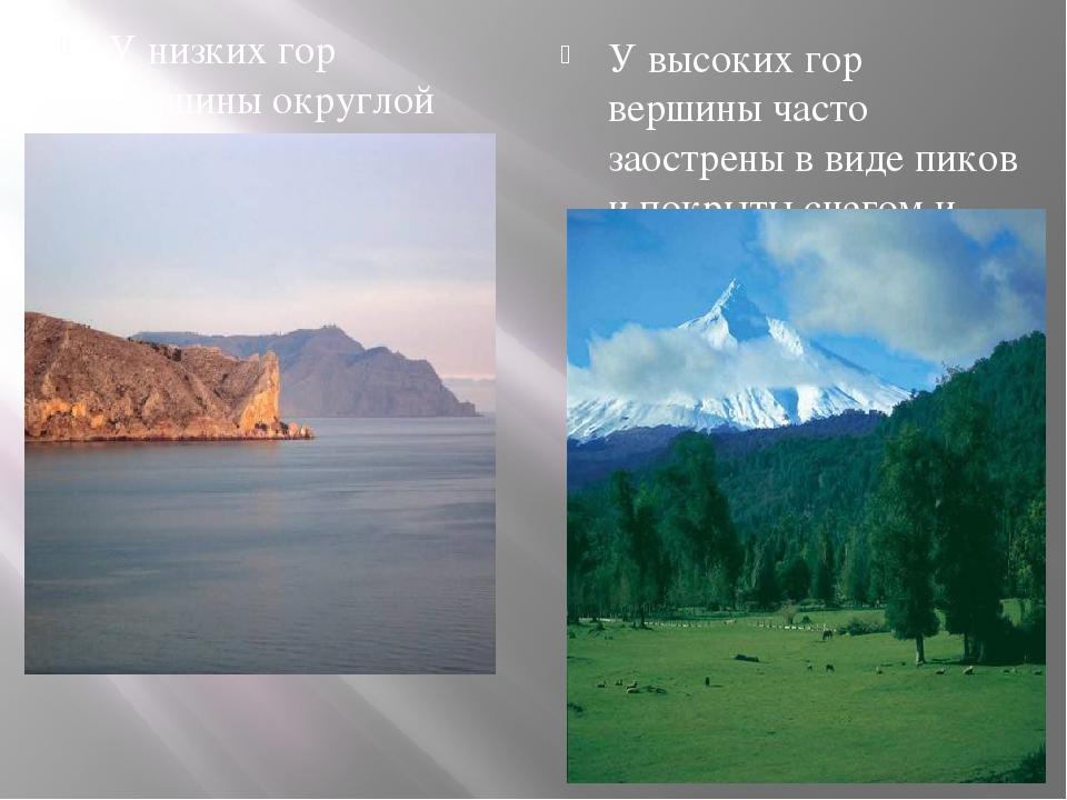 У низких гор вершины округлой формы У низких гор вершины округлой формы