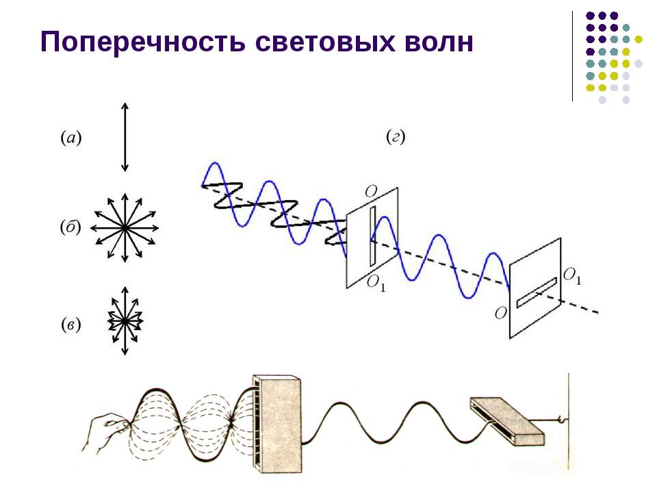Поперечность световых волн