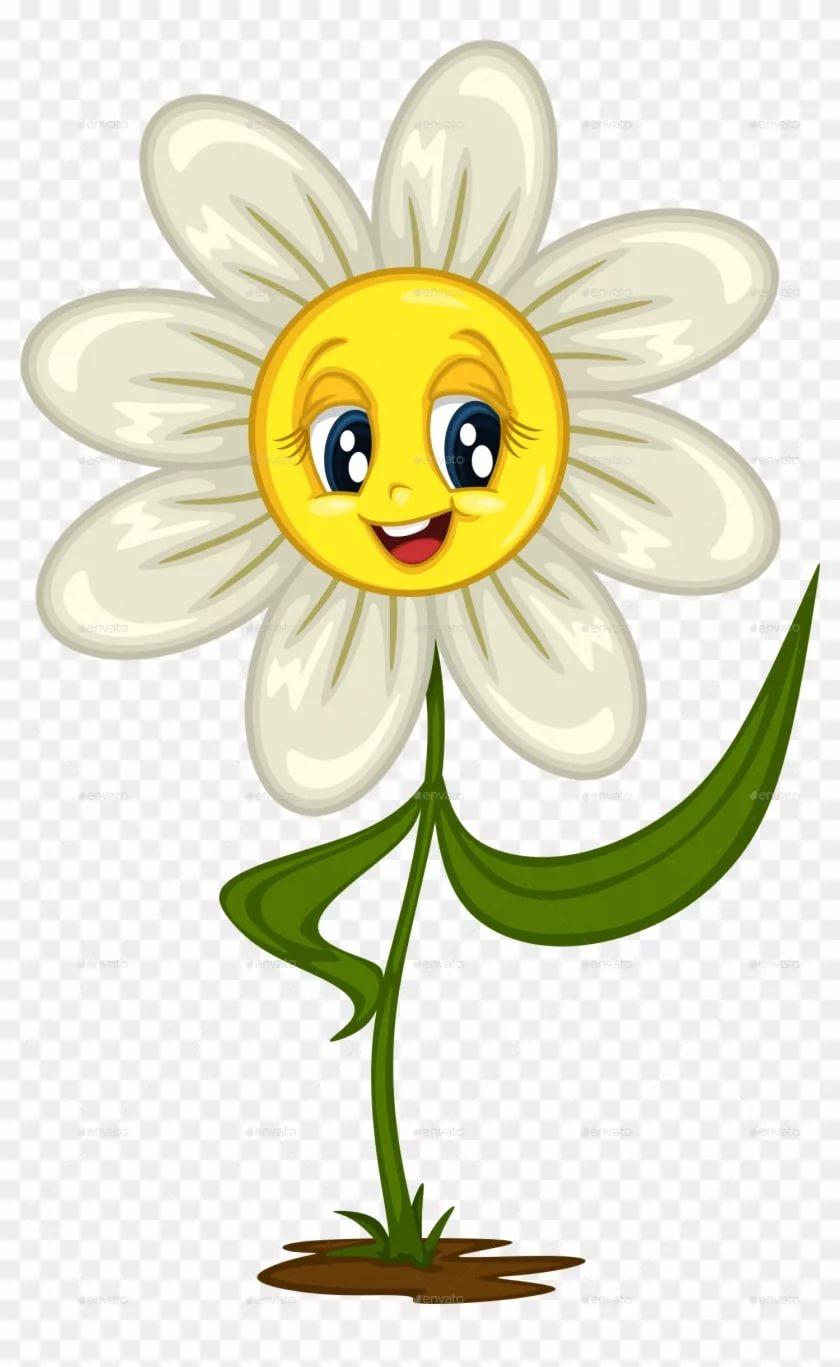 Нарисованные цветы картинки ромашки