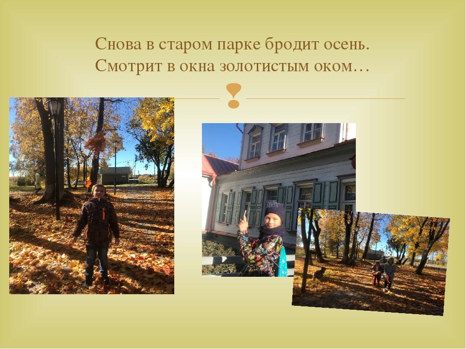 Снова в старом парке бродит осень. Смотрит в окна золотистым оком… 