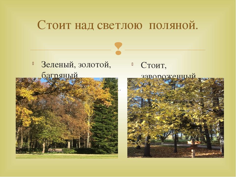 Стоит над светлою поляной. Зеленый, золотой, багряный Стоит, завороженный тиш...