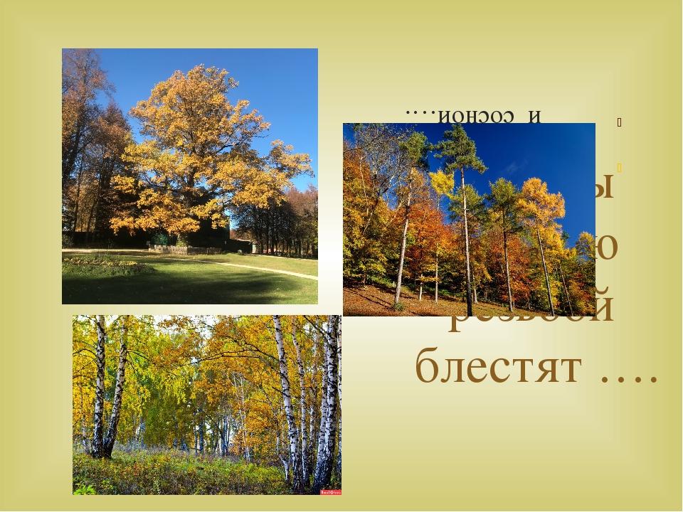 Березы жёлтою резьбой блестят …. Лес пахнет дубом и сосной….