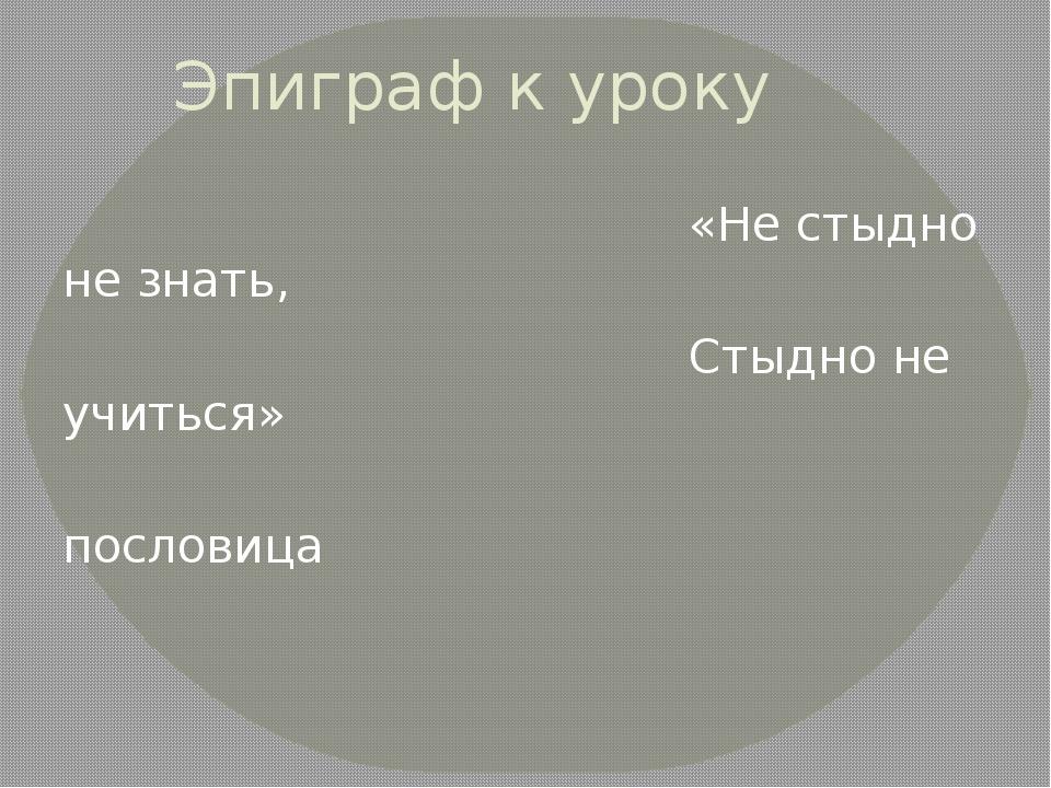 Эпиграф к уроку «Не стыдно не знать, Стыдно не учиться» пословица