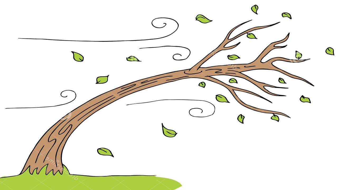 Картинка ветер для дошкольников