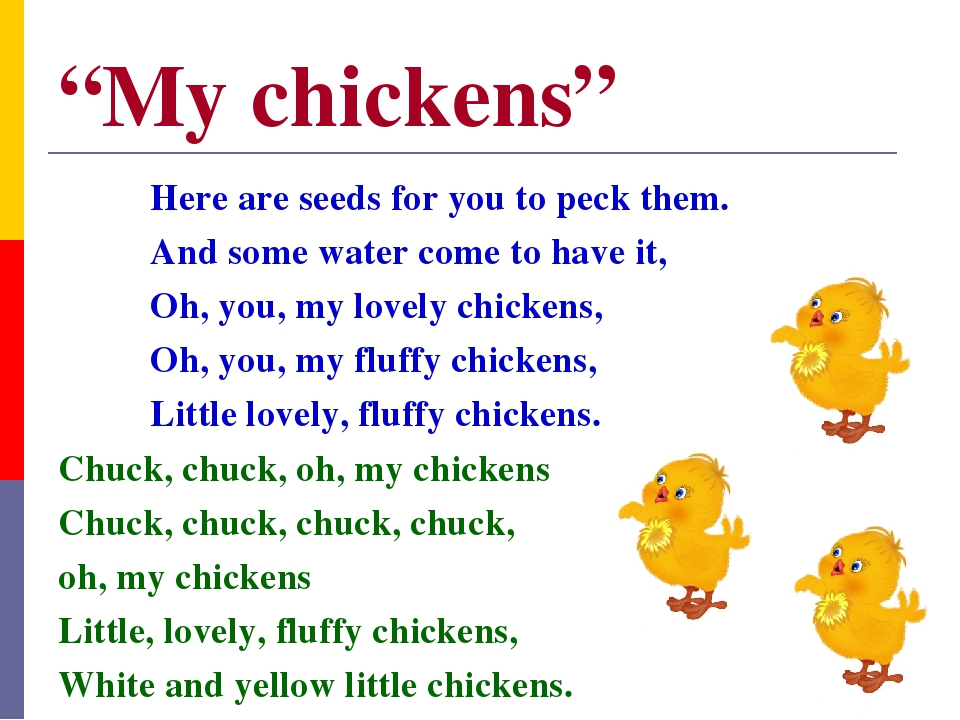 """""""My chickens"""" Here are seeds for you to peck them. And some water come to hav..."""
