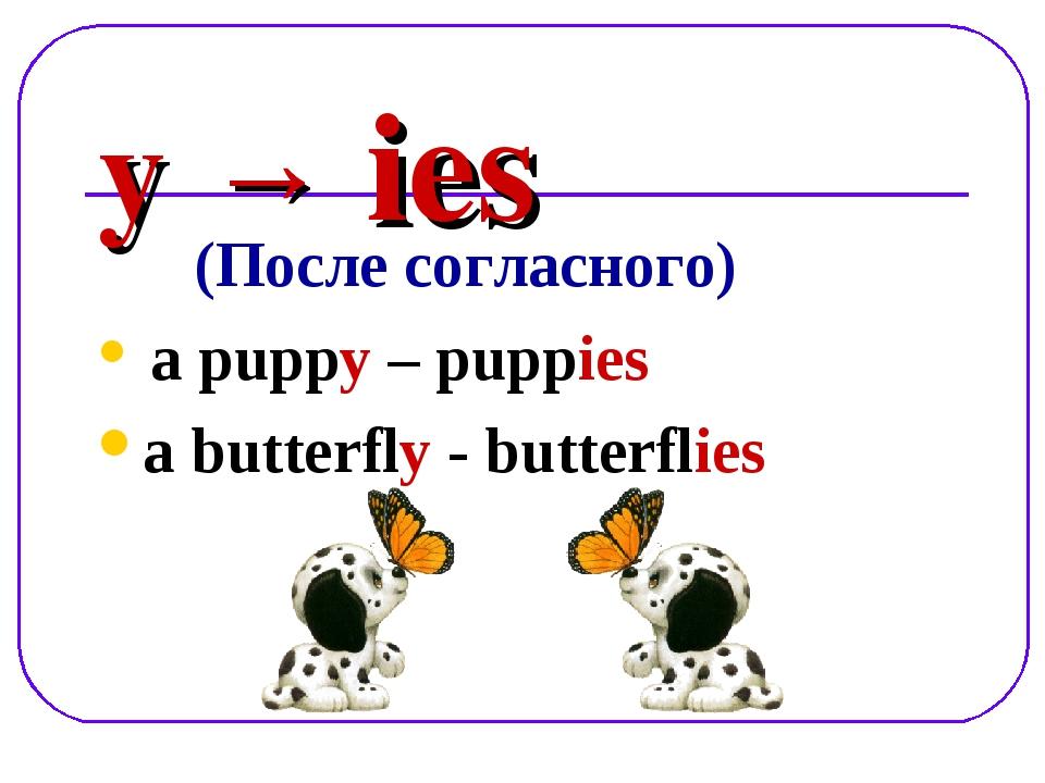 y → ies (После согласного) a puppy – puppies a butterfly - butterflies