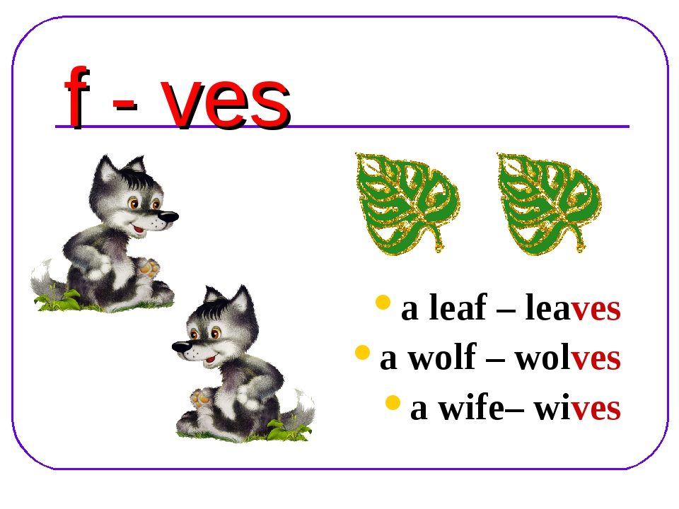 f - ves a leaf – leaves a wolf – wolves a wife– wives
