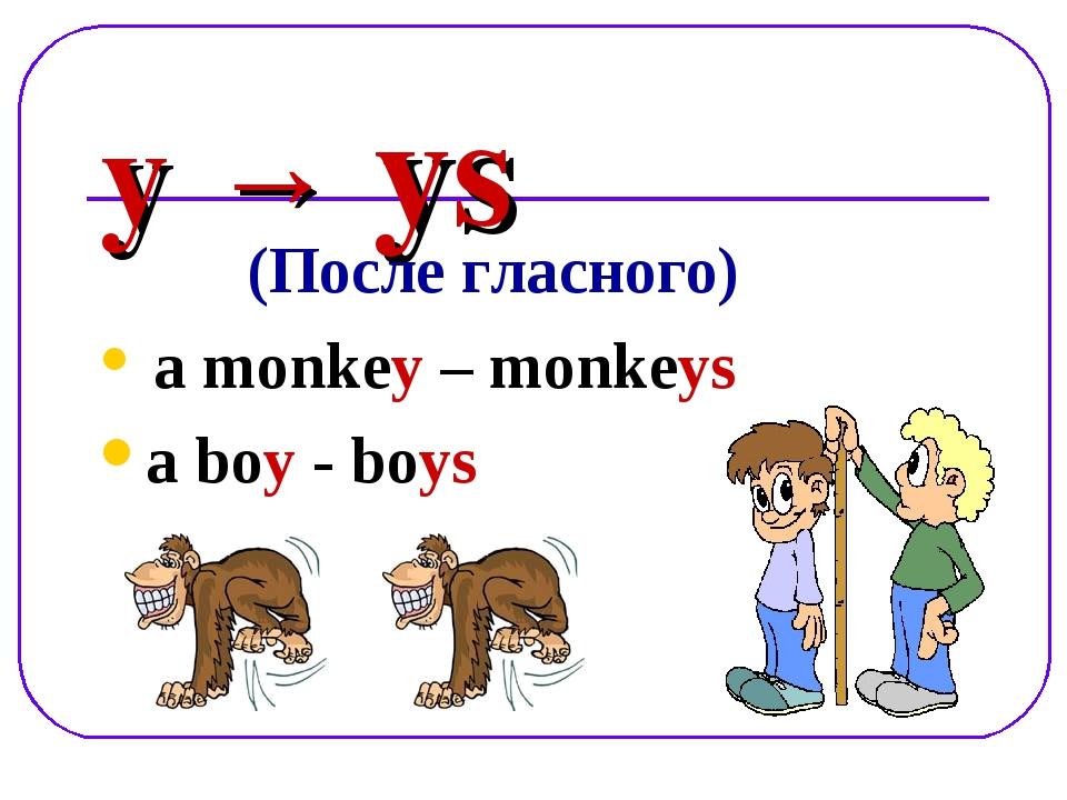 y → ys (После гласного) a monkey – monkeys a boy - boys