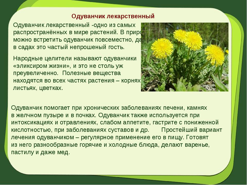 аналог растения ставропольский край фото описание охране труда