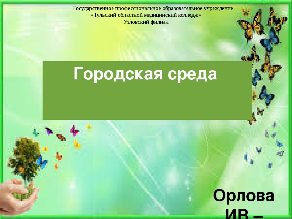 Городская среда Орлова ИВ – преподаватель экологии Государственное профессион...