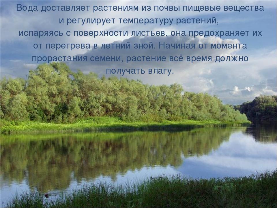 Вода доставляет растениям из почвы пищевые вещества и регулирует температуру...