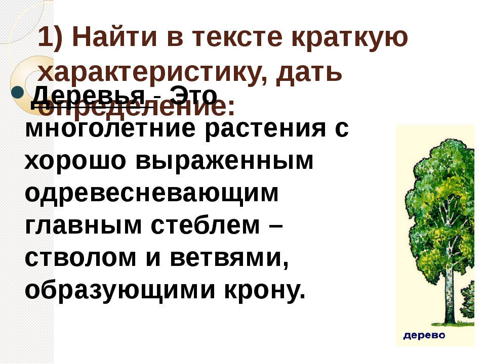 1) Найти в тексте краткую характеристику, дать определение: Деревья - Это мно...