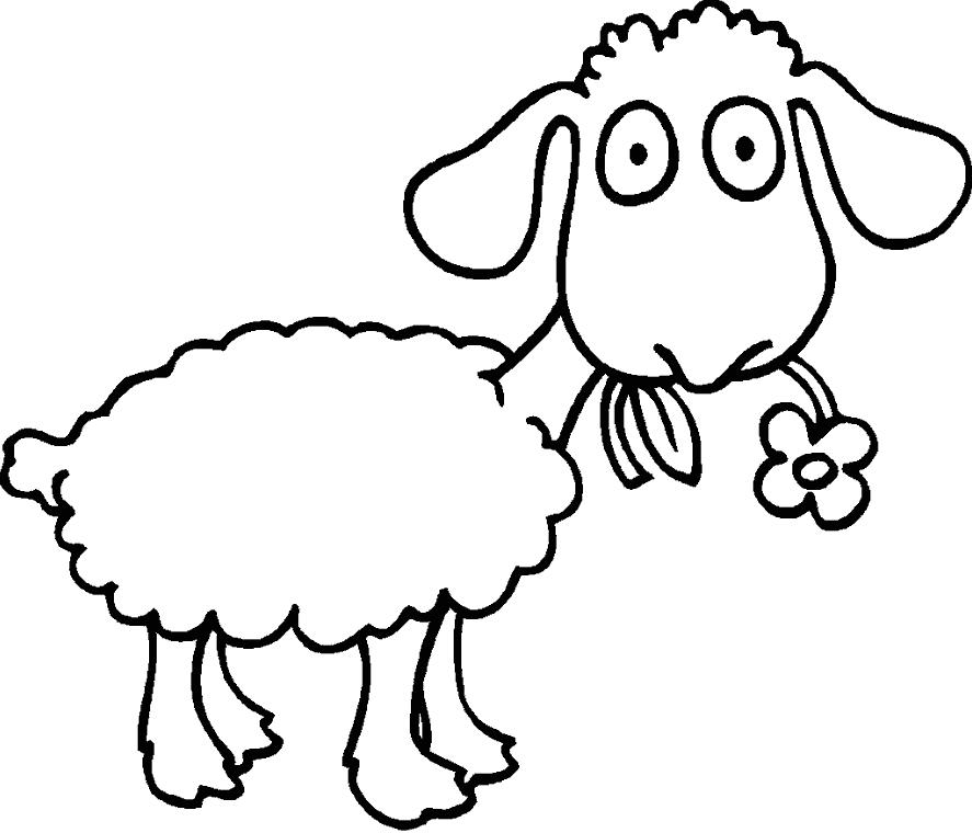 Картинки на окно овечки
