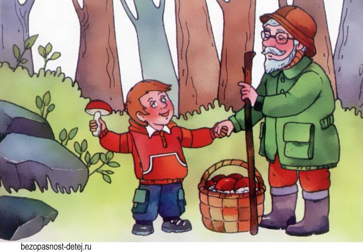 услуги картинки забота о лесе сыпь появляется
