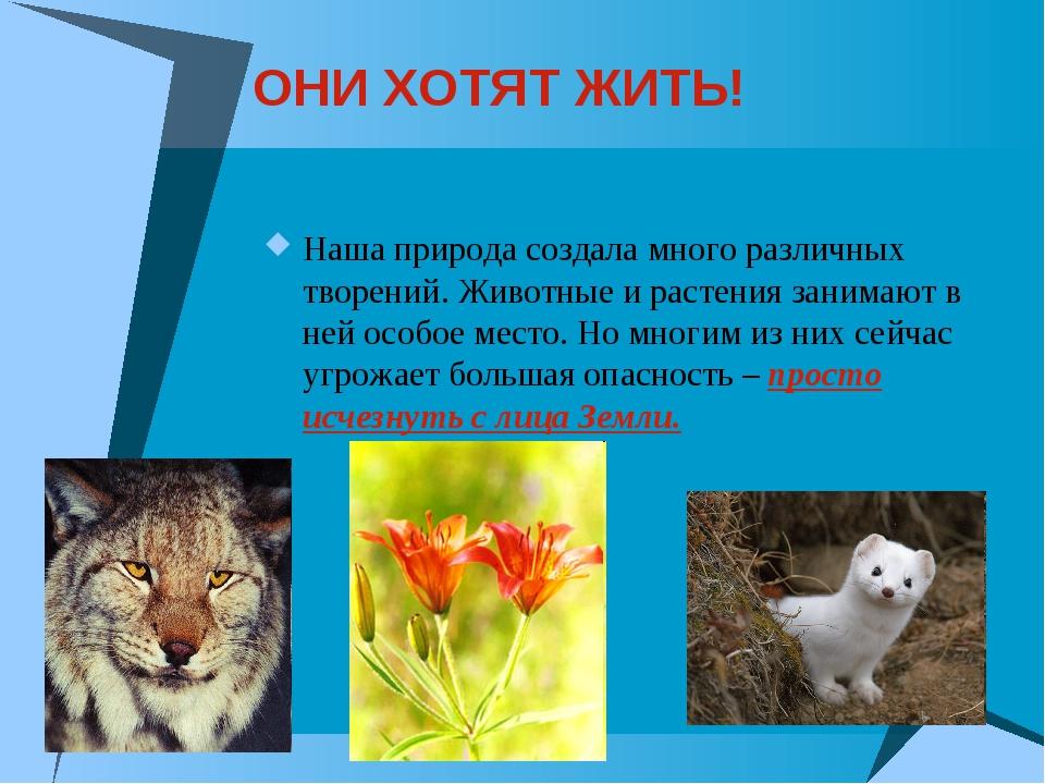 ОНИ ХОТЯТ ЖИТЬ! Наша природа создала много различных творений. Животные и рас...