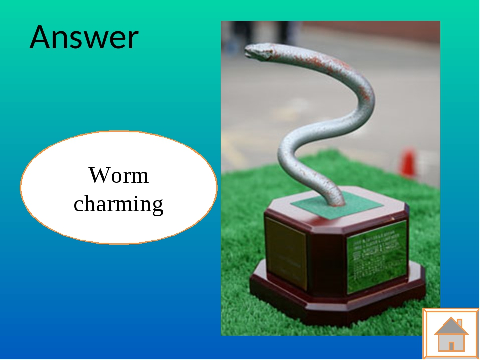 Answer Worm charming