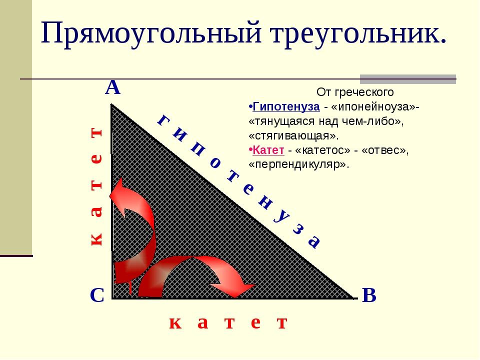 Прямоугольный треугольник. А В С г и п о т е н у з а к а т е т к а т е т От г...