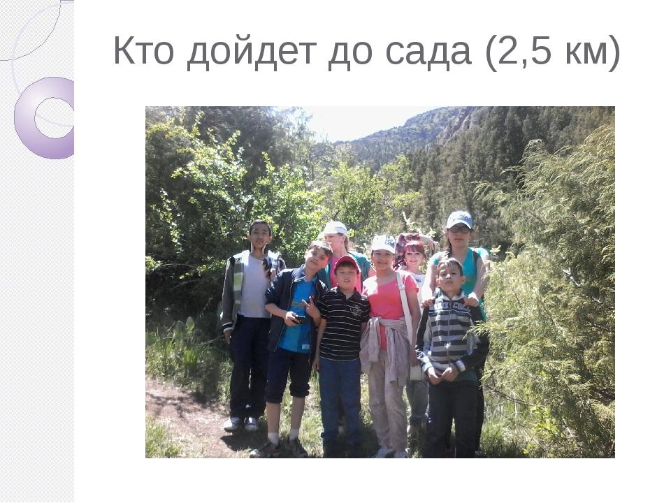 Кто дойдет до сада (2,5 км)