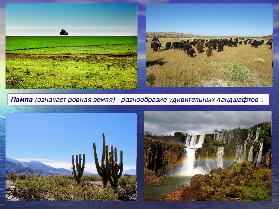 Пампа (означает ровная земля) - разнообразие удивительных ландшафтов...