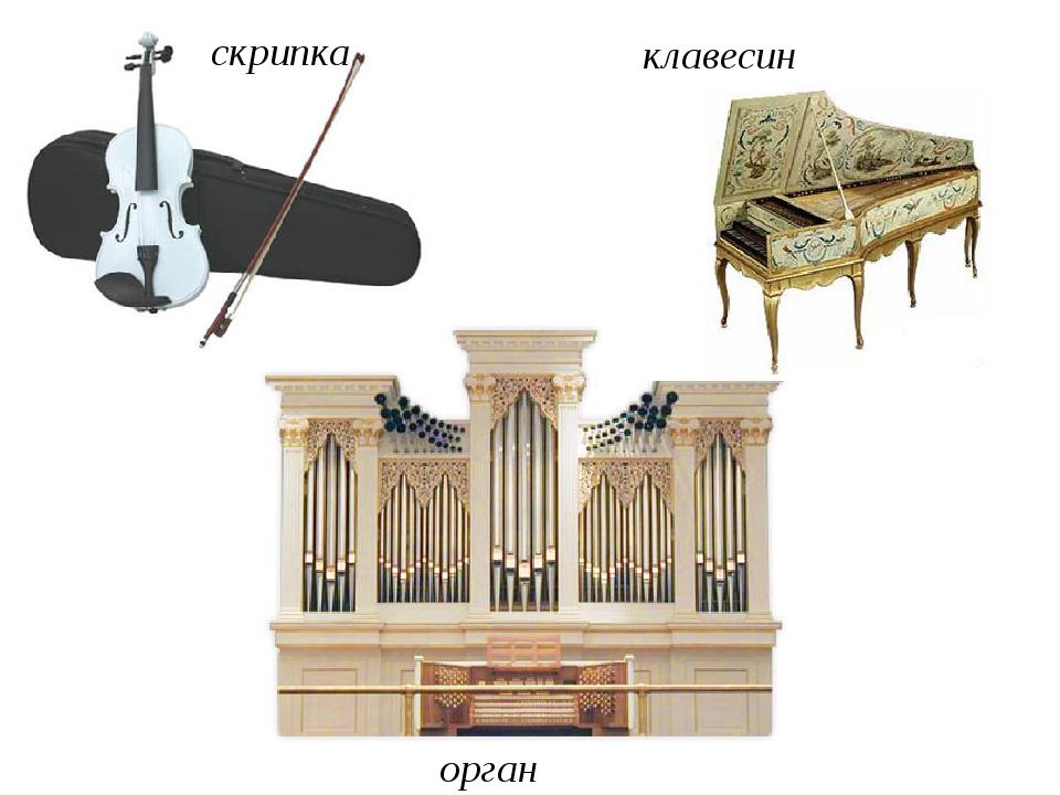 скрипка клавесин орган