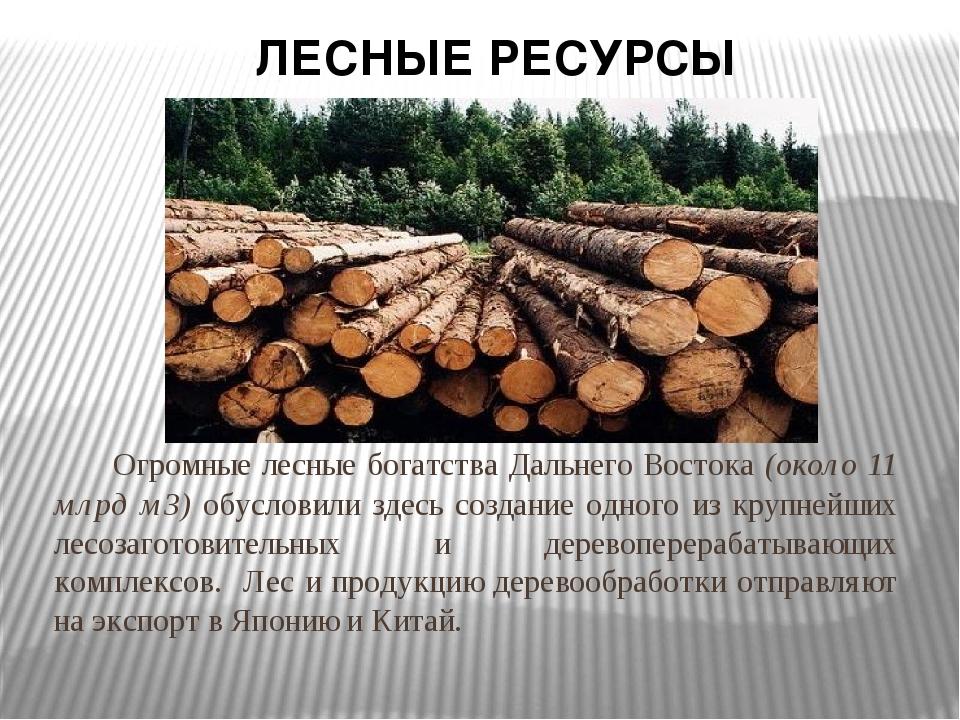 Огромные лесные богатства Дальнего Востока (около 11 млрд м3) обусловили зде...