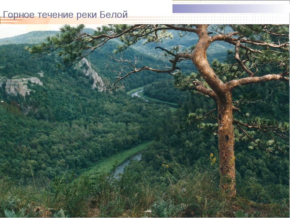 Горное течение реки Белой