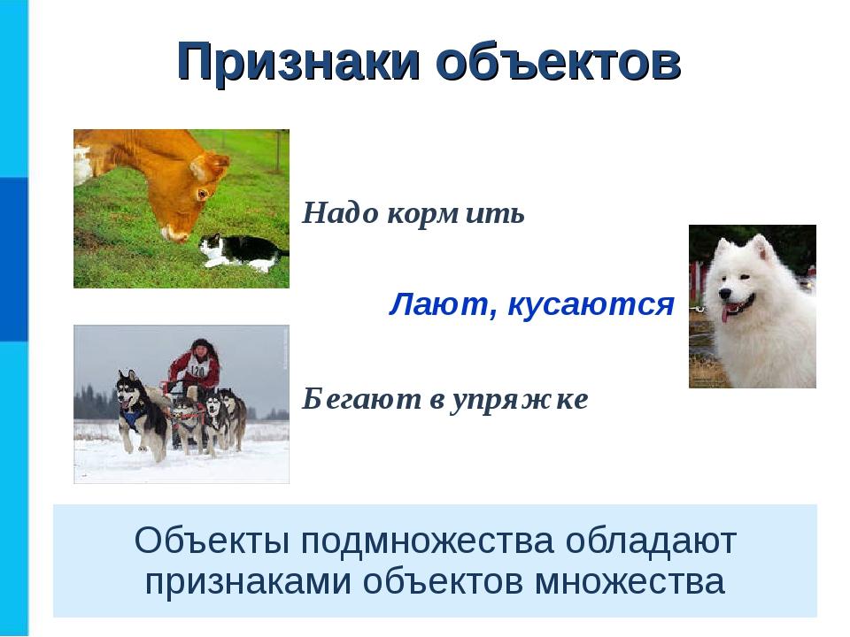 Объекты подмножества обладают признаками объектов множества Надо кормить Лают...