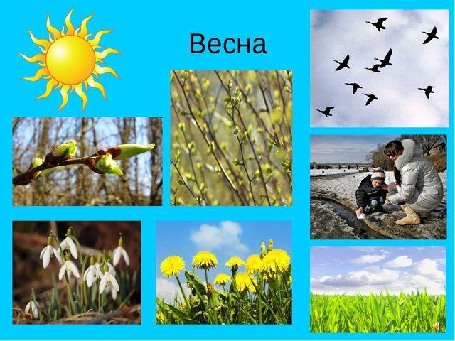 Признака весны картинки для детей