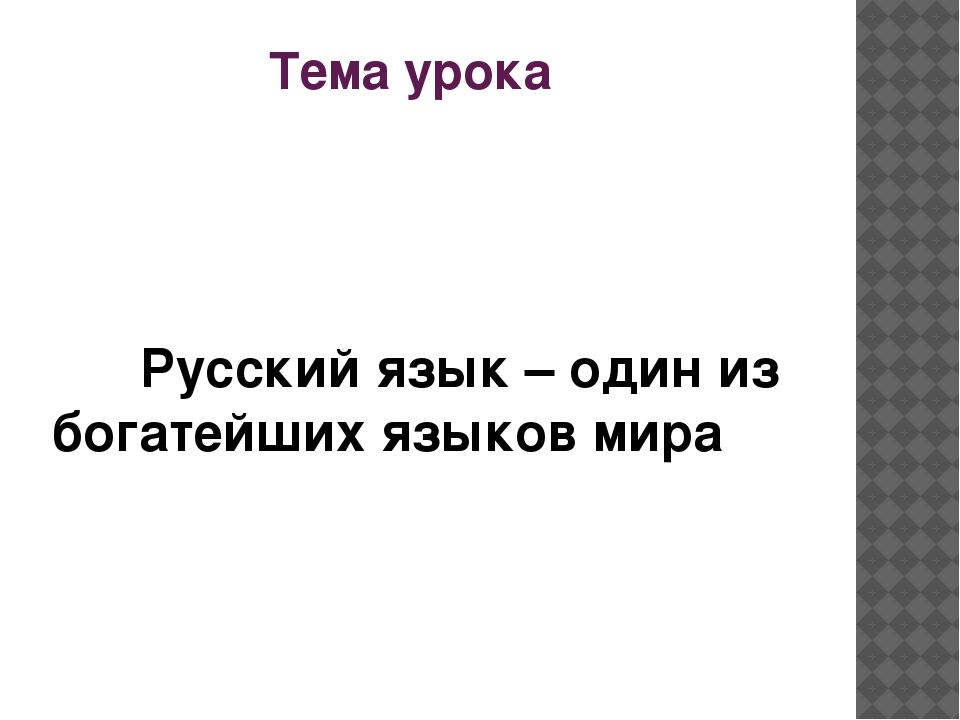 Тема урока Русский язык – один из богатейших языков мира