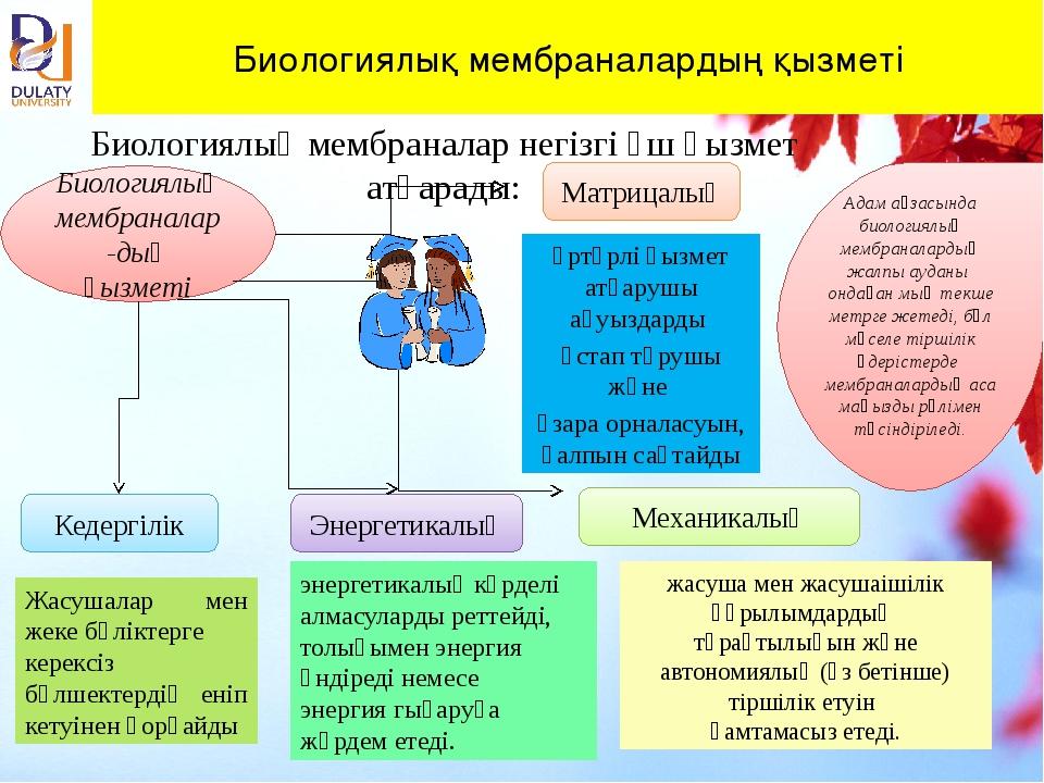 Биологиялық мембраналардың қызметі Биологиялық мембраналар негізгі үш қызмет...