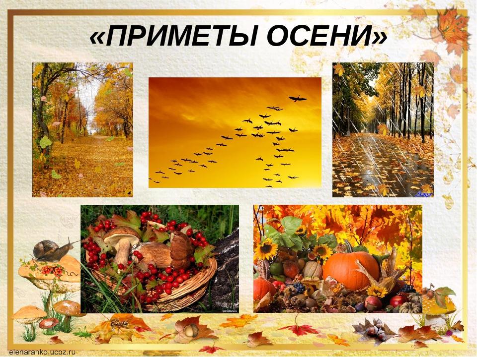 Осенние приметы картинка