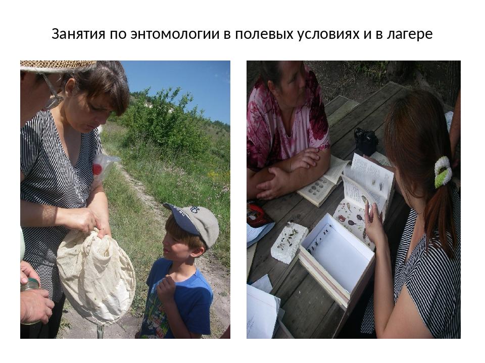 Занятия по энтомологии в полевых условиях и в лагере