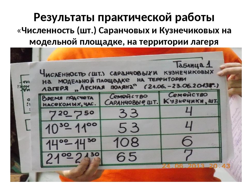 Результаты практической работы «Численность (шт.) Саранчовых и Кузнечиковых н...
