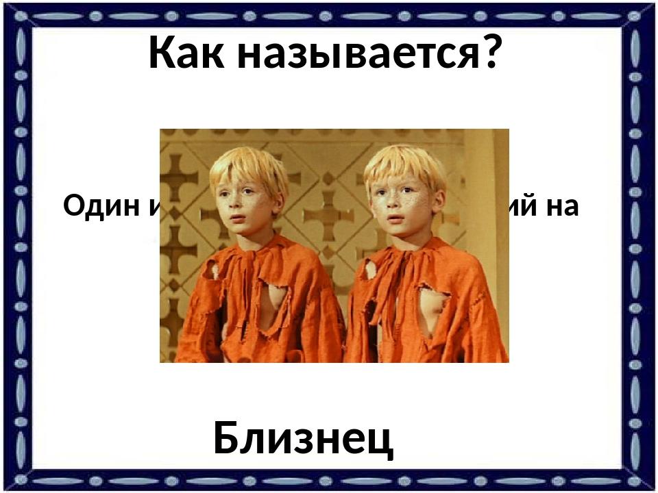 Один из братьев, очень похожий на другого брата. Близнец Как называется?