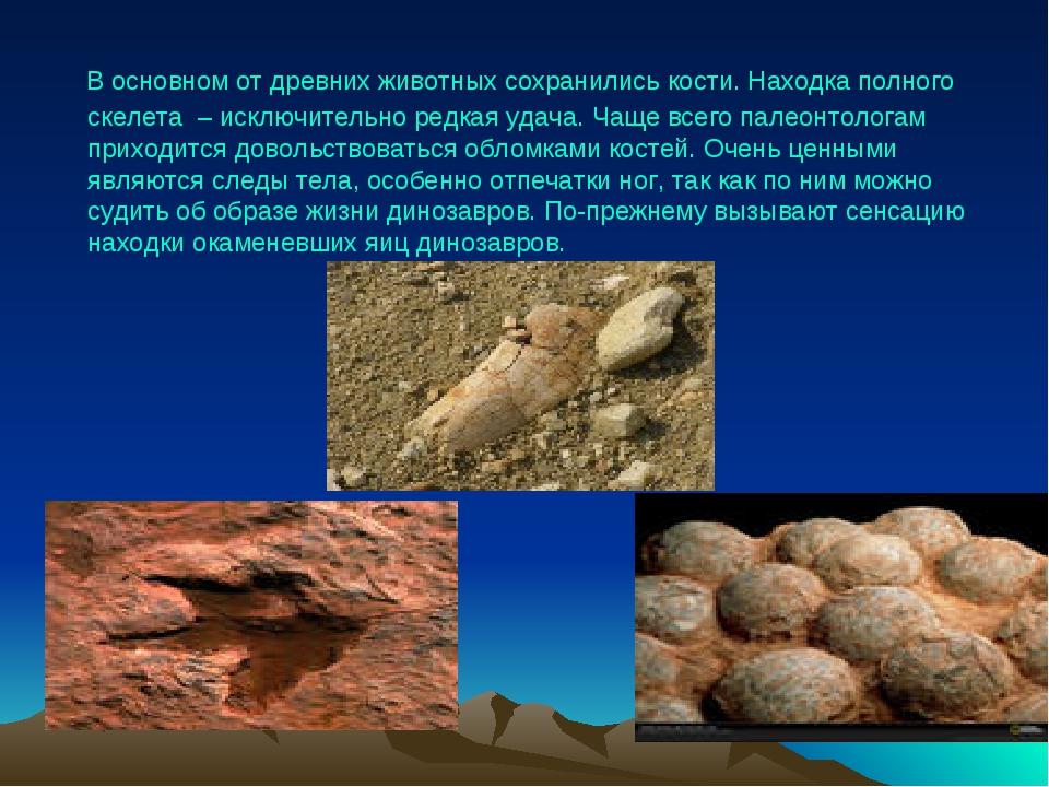 В основном от древних животных сохранились кости. Находка полного скелета –...