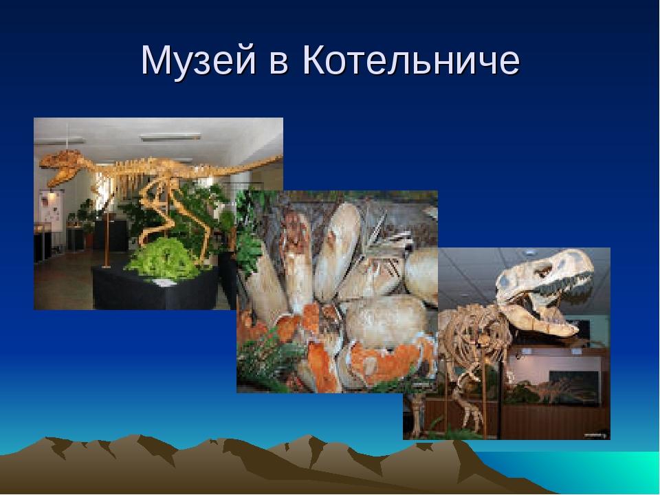 Музей в Котельниче