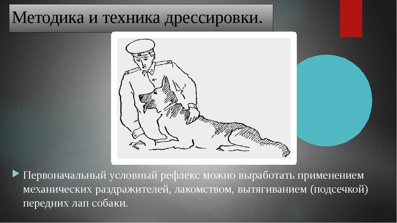Третий способ. Посадив собаку возле себя, дрессировщик подает команду «Лежать...